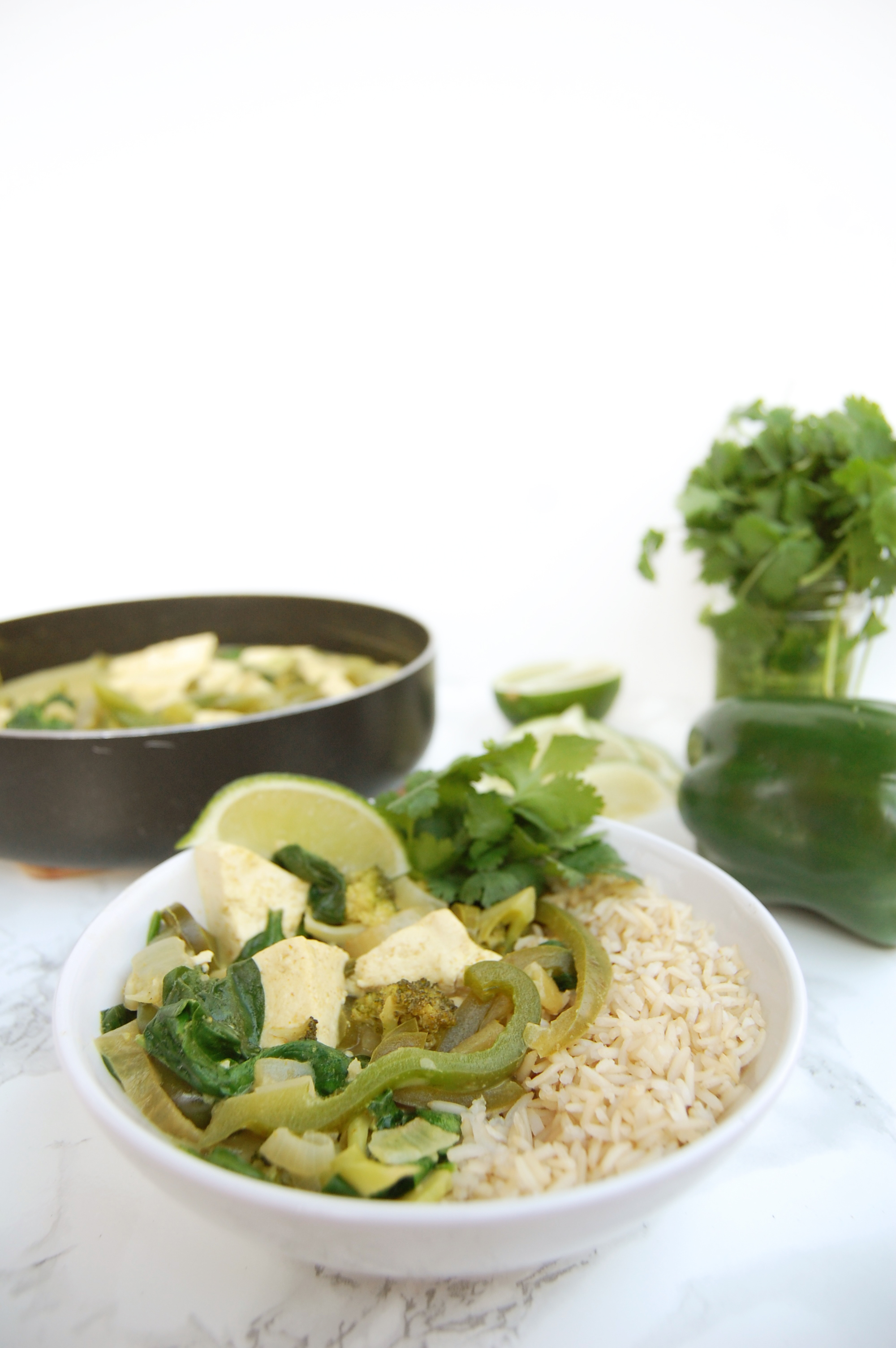 Thai Green Curry | AreYouKitchenMe.com